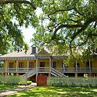 Laura Creole Plantation by Bonnie T.  Barry