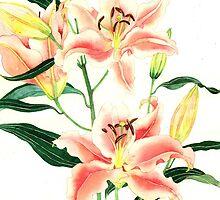 Oriental lilies by Gabby Malpas