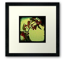 Something in the Air - TTV Framed Print