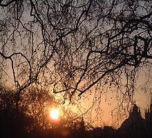 Sunset over Bleheim Palace by rualexa