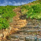Stairway to Coronado Heights Lindsborg Kansas by oakleydo