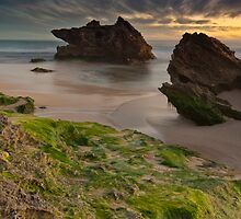 Two Rocks, Green Moss and the Blue hour !! by Jonathan Stacey