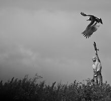 Flight into the unknown - vulture in training by Maska
