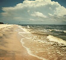 Henderson Point Shoreline by Jonicool