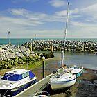 Ventnor Harbour by Rod Johnson