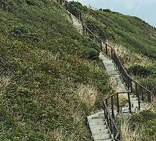 Barsalloch Fort steps, Monreith by sarnia2