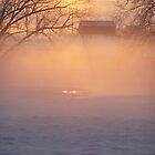 Misty Winter Morning by cuttincwgrl