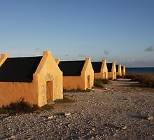 Red Slave Huts by tkrebs