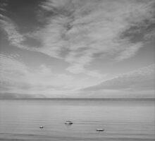 Leelanau Peninsula, Leland , Lake Michigan by jeff lamb