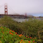 Golden Gate Bridge, San Francisco. by Edward Mahala