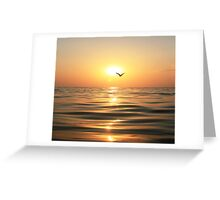Sea, sunset and seagull Greeting Card
