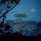 Fog by Moonlight by Eve Parry