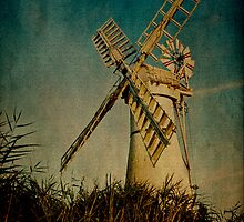 Thurne Mill - Neglected Oil Painting by Paul Wilkin