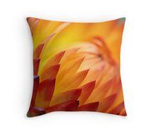 A Burst of Orange Throw Pillow