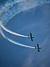 Eastbourne Airbourne I by TheWalkerTouch