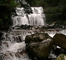 liffy falls first visit by Thow's Photography .