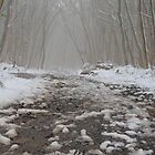 foggy mountain path by neoellis