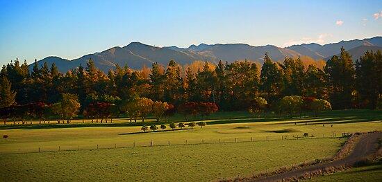 Autumn colours, Kaikoura Golf Course, NZ, August 2009 by Odille Esmonde-Morgan
