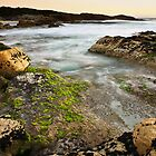 First Light-Bay of Fires-Tasmania by Ohlordi