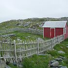 Red Shed - Cape Bonavista by Stephen Stephen