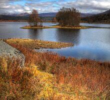 Loch Finnart by Paul  Gibb