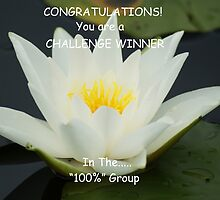 Challenge Winner Banner for 100% Group by Sandra Cockayne