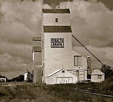 Prairie Icon - Stettler, Alberta by Roxanne Persson