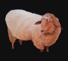Shaggy Sheep T-Shirt and Sticker by Scott Plaster