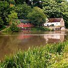 The River Weir Durham  by saxonfenken