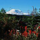 Wildflowers & Mt. Rainier by Tori Snow