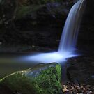 Moss and Flow by Tatiana R
