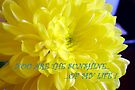 Sunshine Of My Life (card) by AuntDot