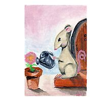 Miss Mouse Tends House Photographic Print