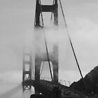 A fogged in Golden Gate Bridge by Tracy Freese