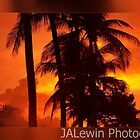 Fiery sunset by jalewin