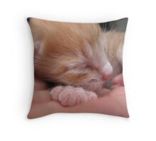 6 days old Throw Pillow