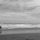 Grey Beach by aaronb