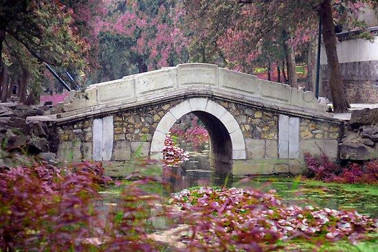 Peaceful Bridge by Brad Airs