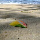 Reggae leaf by Jessica  Schoepen