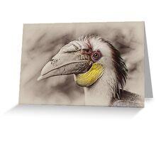 Hornbill Greeting Card