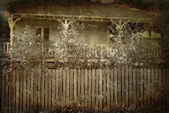 A Cottage in Bridgetown, Western Australia #2 by Elaine Teague