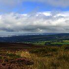 Exmoor Panorama by Rob Hawkins