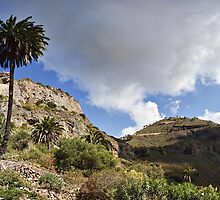 Bandama Crater, Gran Canaria, Spain. by David Lewins