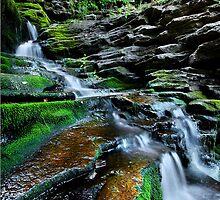 Ganoga Falls by Tojy George