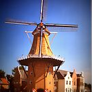 Vermeer Windmill by Linda Miller Gesualdo