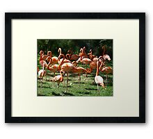 Visual Puzzle Framed Print