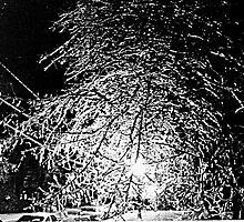 Ice Web at Night by John Carpenter
