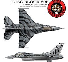 120th Fighter Squadron F-16 Fighting Falcon Tiger Meet  by peterpan03