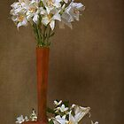 Mid-June Lilies & Mock Orange Blossoms by Leslie Nicole