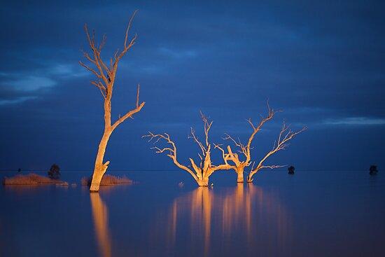 Evening Light | NSW by Ben Messina